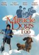 Смотреть фильм Зак и чудо-собаки онлайн на Кинопод бесплатно