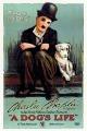 Смотреть фильм Собачья жизнь онлайн на Кинопод бесплатно