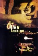 Смотреть фильм Андалузский пес онлайн на Кинопод бесплатно