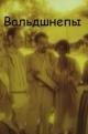 Смотреть фильм Вальдшнепы онлайн на Кинопод бесплатно