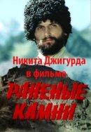 Смотреть фильм Раненые камни онлайн на KinoPod.ru бесплатно