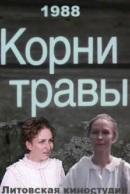 Смотреть фильм Корни травы онлайн на KinoPod.ru бесплатно