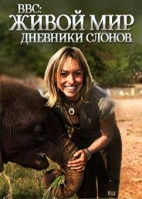Смотреть Живой мир. Дневники слонов онлайн на Кинопод бесплатно