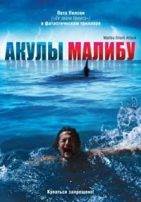 Смотреть Акулы Малибу онлайн на Кинопод бесплатно
