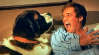 Коллекция фильмов Комедии про животных онлайн на Кинопод