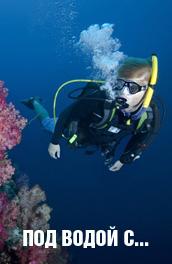 Смотреть Под водой с... онлайн на Кинопод бесплатно