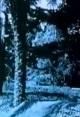 Смотреть фильм Барселона – парк в сумерках онлайн на Кинопод бесплатно