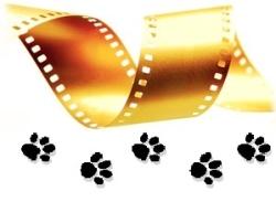 Список лучших фильмов о животных