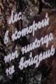 Смотреть фильм Лес, в который ты никогда не войдешь онлайн на Кинопод бесплатно