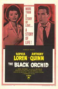 Смотреть Черная орхидея онлайн на Кинопод бесплатно