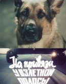 Смотреть фильм На привязи у взлетной полосы онлайн на KinoPod.ru бесплатно