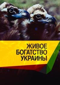 Смотреть Живое богатство Украины онлайн на Кинопод бесплатно