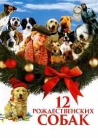 Смотреть 12 рождественских собак онлайн на Кинопод бесплатно