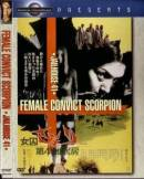 Смотреть фильм Скорпион: Барак № 41 онлайн на Кинопод бесплатно