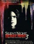 Смотреть фильм Тихая ночь, смертельная ночь 3: Лучше поберегись! онлайн на Кинопод бесплатно