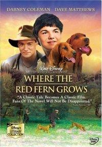 Смотреть Цветок красного папоротника онлайн на Кинопод бесплатно