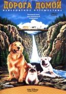 Смотреть фильм Дорога домой: Невероятное путешествие онлайн на Кинопод бесплатно