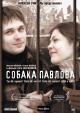Смотреть фильм Собака Павлова онлайн на Кинопод бесплатно