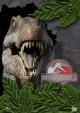 Смотреть фильм Парк Юрского периода 3 онлайн на Кинопод бесплатно