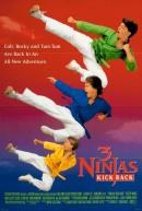 Смотреть фильм Три ниндзя наносят ответный удар онлайн на Кинопод бесплатно
