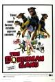 Смотреть фильм Шайка доберманов онлайн на Кинопод бесплатно