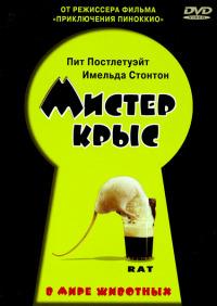 Смотреть Мистер крыс онлайн на Кинопод бесплатно