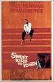 Смотреть фильм Сладкоголосая птица юности онлайн на Кинопод бесплатно