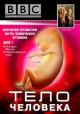 Смотреть фильм BBC: Тело человека онлайн на Кинопод бесплатно