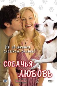 Смотреть Собачья любовь онлайн на Кинопод бесплатно