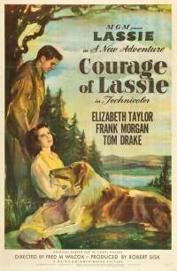 Смотреть Храбрость Лесси онлайн на Кинопод бесплатно