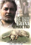 Смотреть фильм Белый Бим Черное ухо онлайн на KinoPod.ru бесплатно