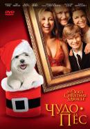 Смотреть фильм Чудо-пес онлайн на Кинопод бесплатно