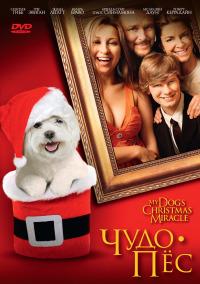 Смотреть Чудо-пес онлайн на Кинопод бесплатно