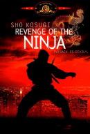 Смотреть фильм Месть ниндзя онлайн на Кинопод бесплатно