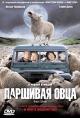 Смотреть фильм Паршивая овца онлайн на Кинопод бесплатно