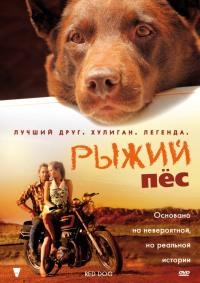 Смотреть Рыжий пес онлайн на Кинопод бесплатно