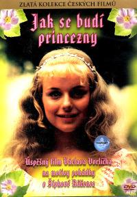 Смотреть Как разбудить принцессу онлайн на Кинопод бесплатно