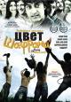 Смотреть фильм Цвет шафрана онлайн на Кинопод бесплатно