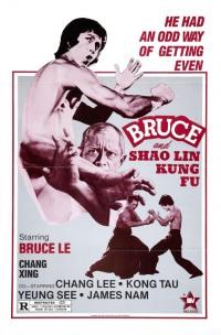 Смотреть Брюс и кунг-фу монастыря Шао-Линь онлайн на Кинопод бесплатно