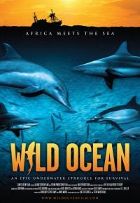 Смотреть Дикий океан 3D онлайн на Кинопод бесплатно
