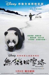 Смотреть След панды онлайн на Кинопод бесплатно