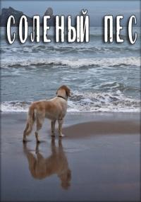 Смотреть Соленый пес онлайн на Кинопод бесплатно