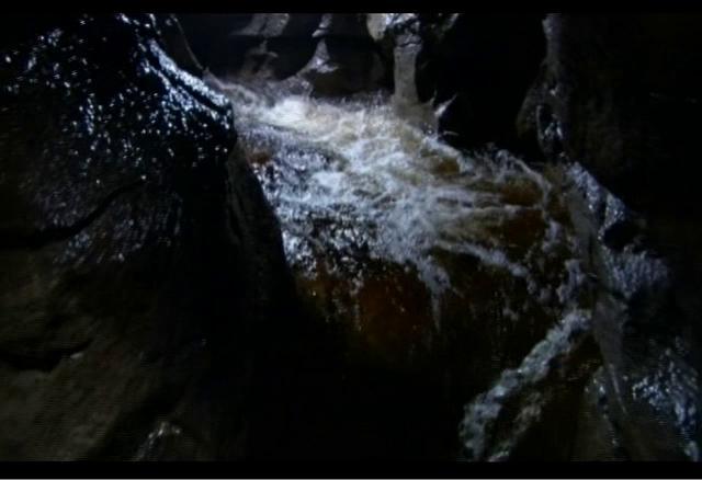 """Фильм онлайн  """"BBC: Планета Земля"""" фото актеров"""