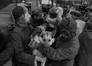 """Фильм онлайн  """"Четыре танкиста и собака"""" фото актеров"""