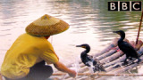 Сериал BBC: Дикий Китай / Wild China