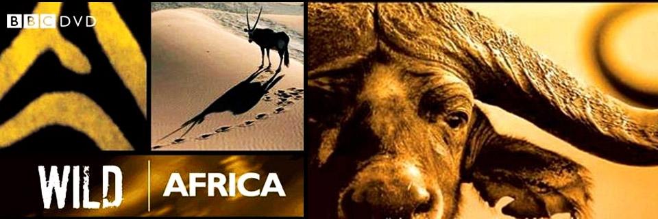 Смотреть сериал BBC: Дикая Африка онлайн бесплатно