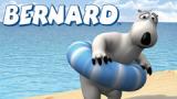 Сериал Бернард / Bernard