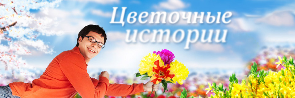 Смотреть сериал Цветочные истории онлайн бесплатно