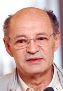 Мустафа Надаревич