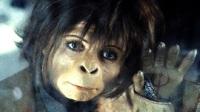 Коллекция фильмов Фильмы про обезьян онлайн на Кинопод